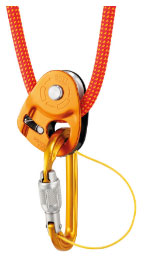 Petzl Sm'D connectec to Microtraxion